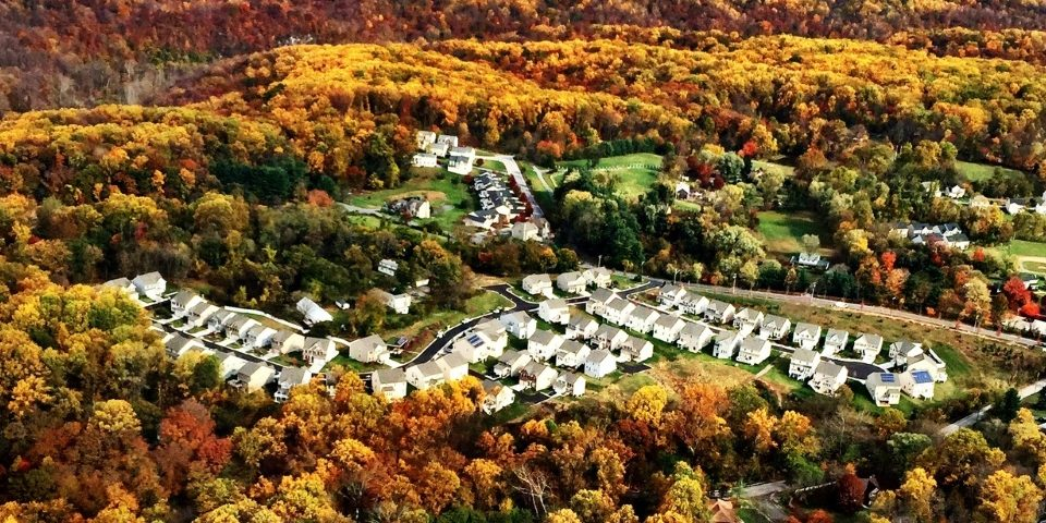 aerial-photo-of-houses-and-leaves